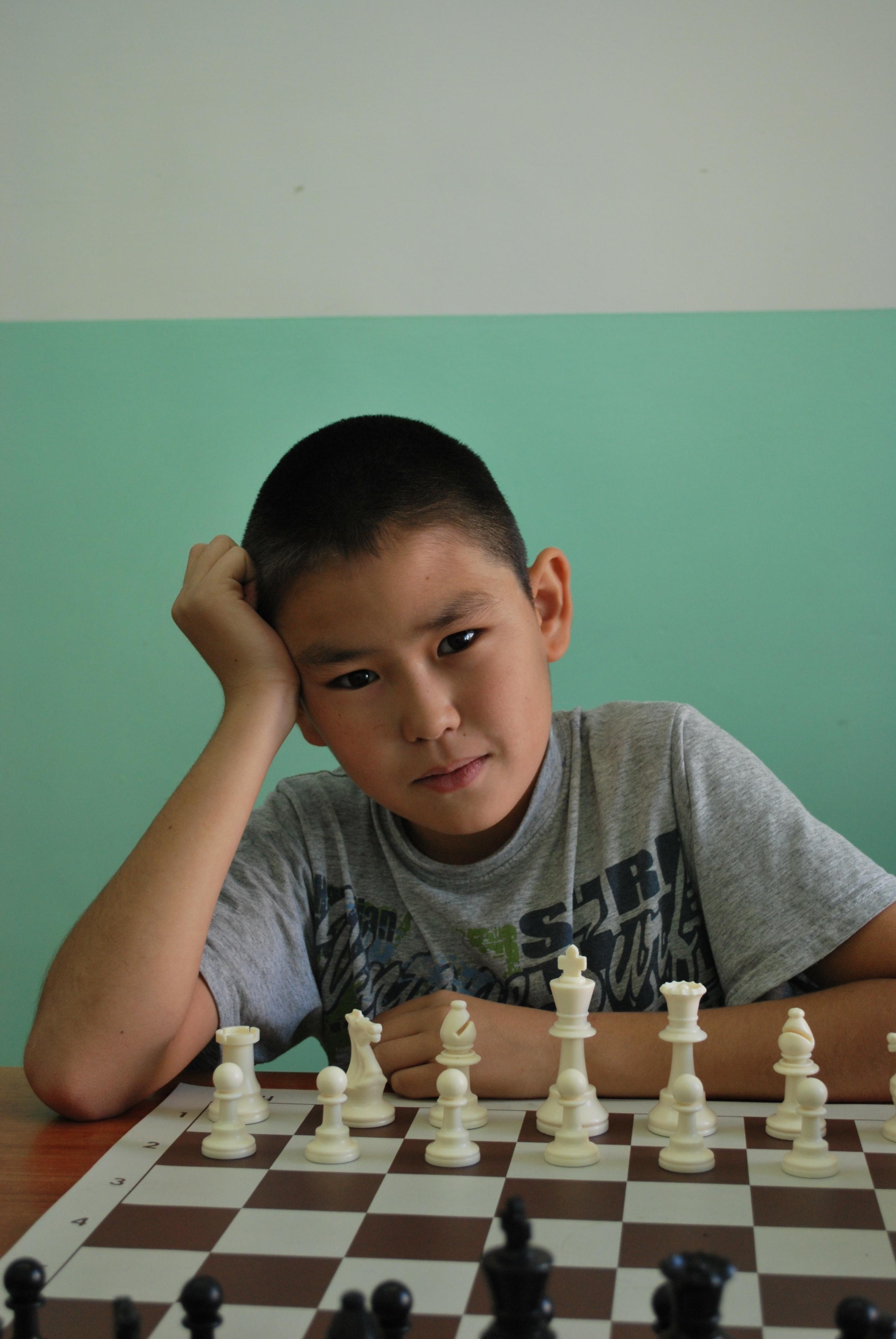 Шахматисты 035